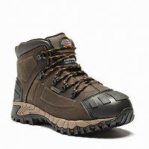 Dickies WD112 Medway Safety Boots (Brown)